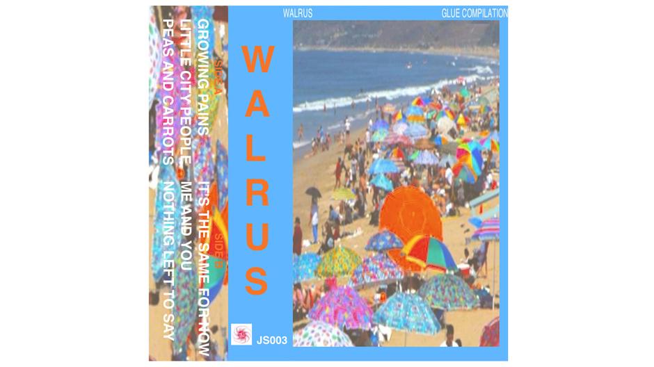 walrus cover